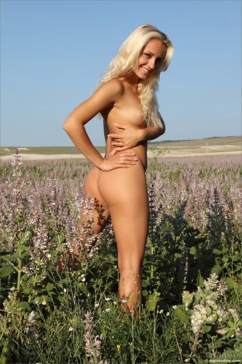 Сельская красотка совершенно голая на цветочном поле