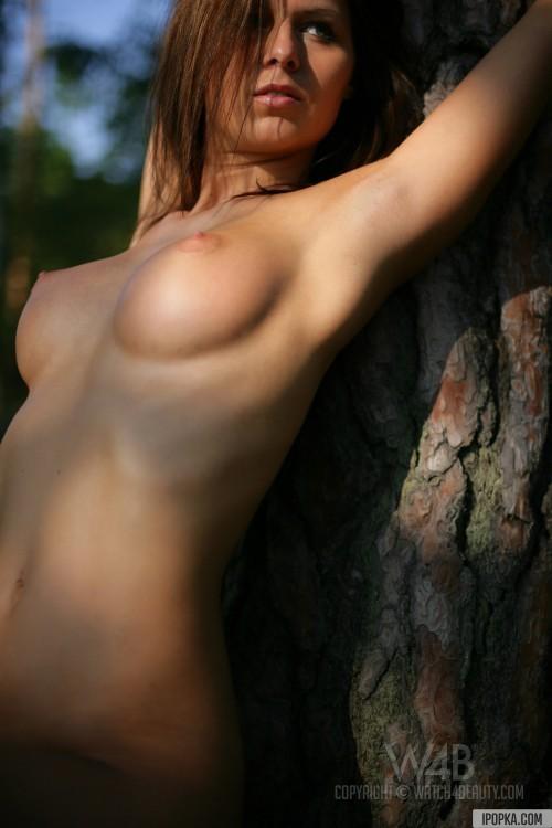 Голая девушка с большими сиськами привязана  к дереву