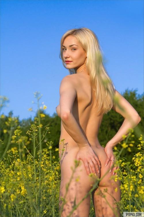 Поле с высокой травой едва прикрывало голую девицу