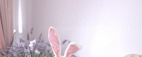 Красотка в костюме сексуального кролика