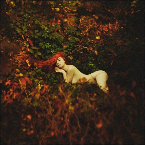 Рыжие девушки обворожительно прекрасны, эротические картинки
