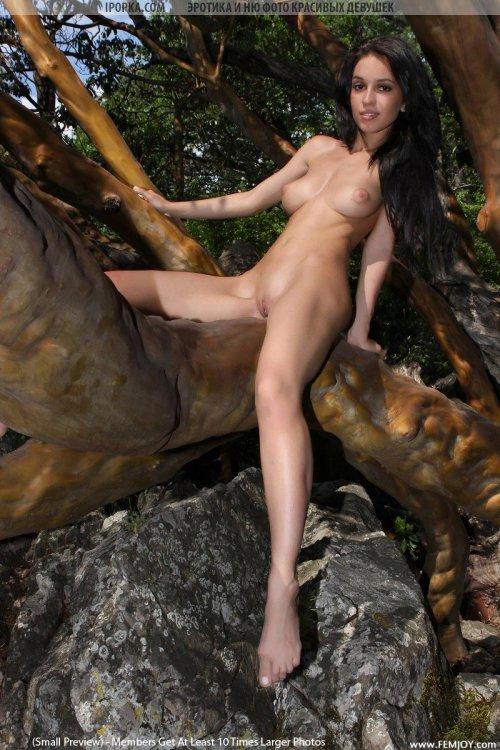 Прекрасная голая брюнеточка с красивой грудью смотреть